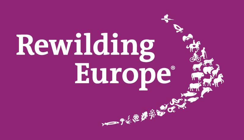 Logo Rewilding Europe - purple background